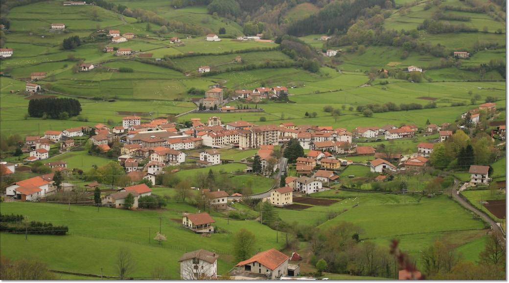 Foto 'Tolosa' van Miguel Ángel García. (CC BY) / bijgesneden versie van origineel