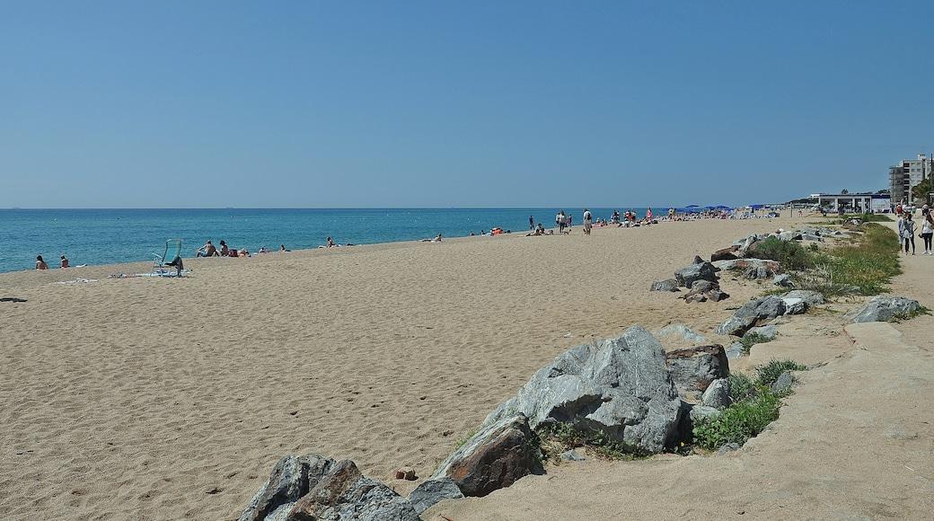 """""""Playa de Levante""""-foto av Alberto-g-rovi (CC BY-SA) / Urklipp från original"""