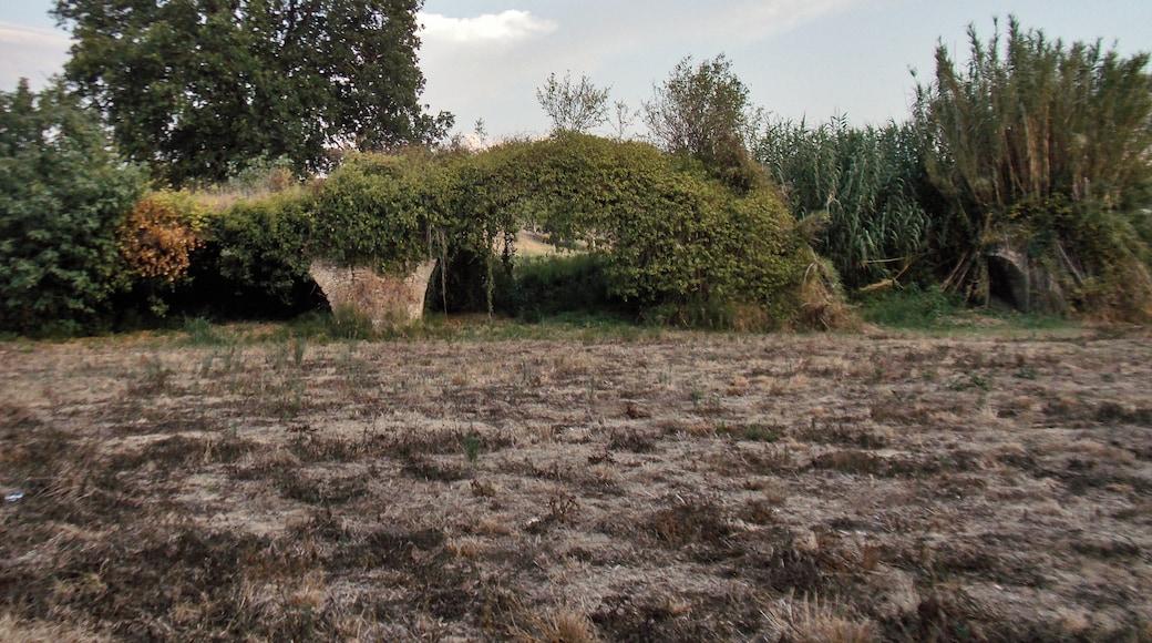 """Foto """"Benevento"""" de Decan (page does not exist) (CC BY-SA) / Recortada de la original"""