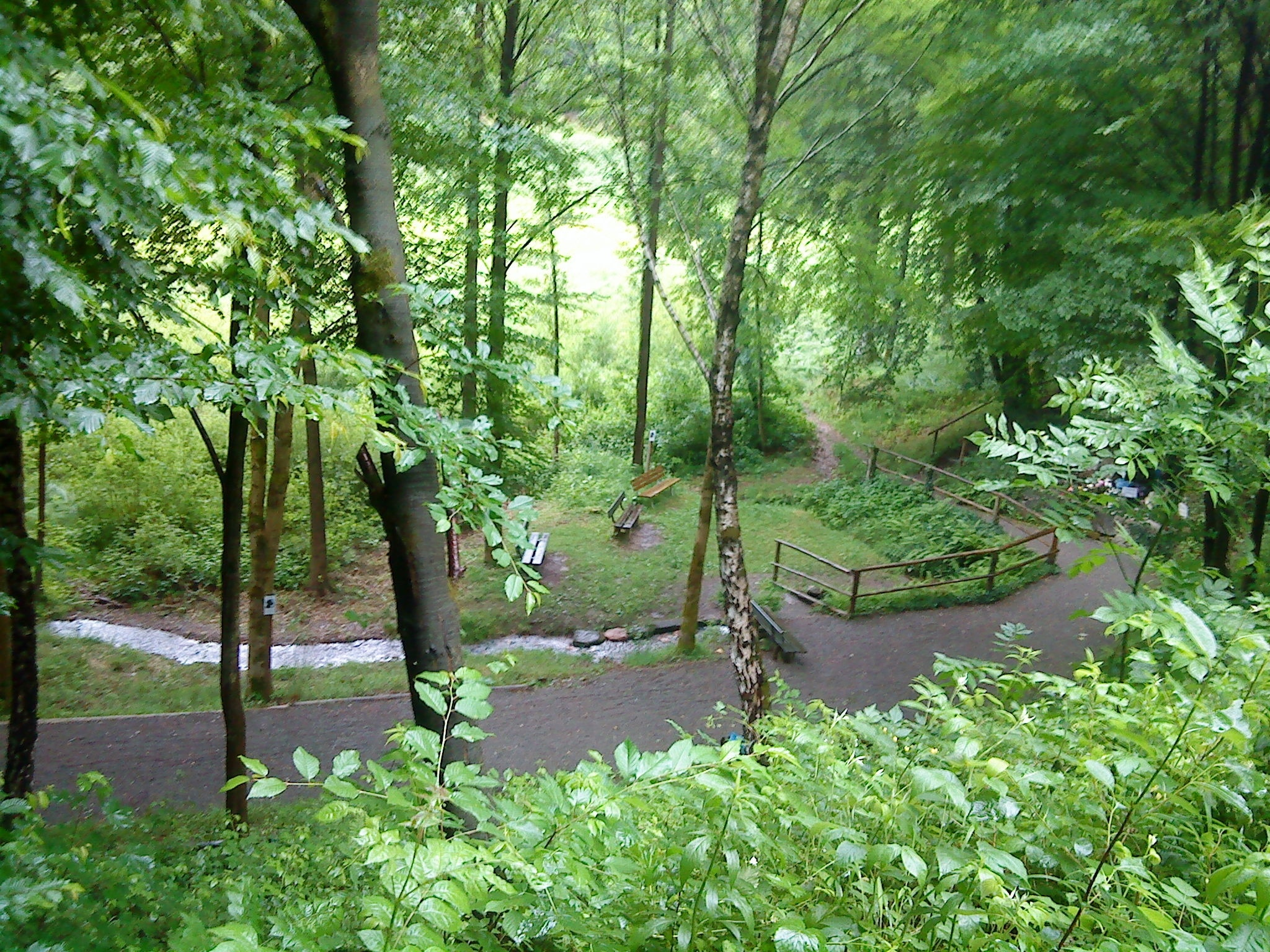 Heinrichsthaler Forst, Beieren, Duitsland