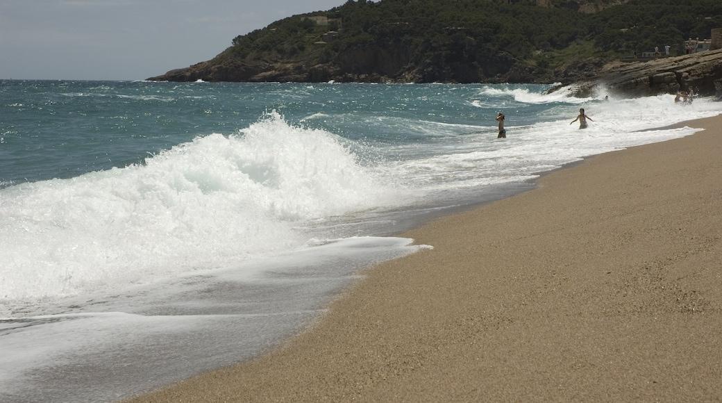 """Foto """"Strand Playa de Pals"""" von Arwin Meijer (CC BY-SA)/zugeschnittenes Original"""