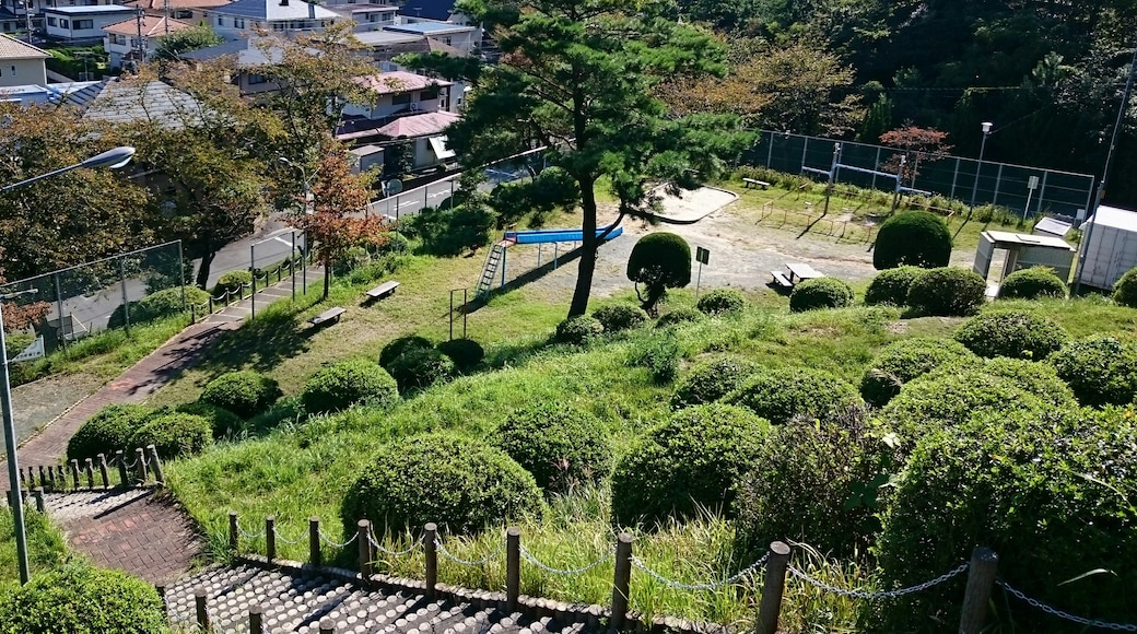 """Photo """"Toyokawa"""" by Lombroso (CC BY-SA) / Cropped from original"""