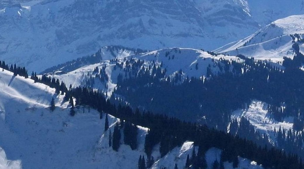 """Photo """"Chatel"""" by tonyfurrer (CC BY) / Cropped from original"""
