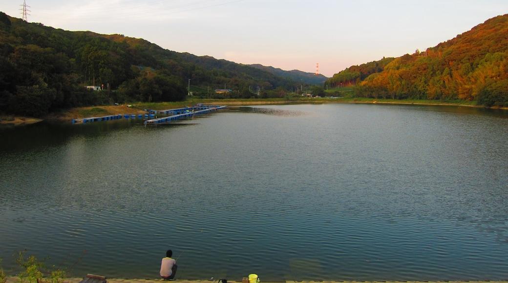 "Photo ""Kakegawa"" by Sato S (CC BY-SA) / Cropped from original"