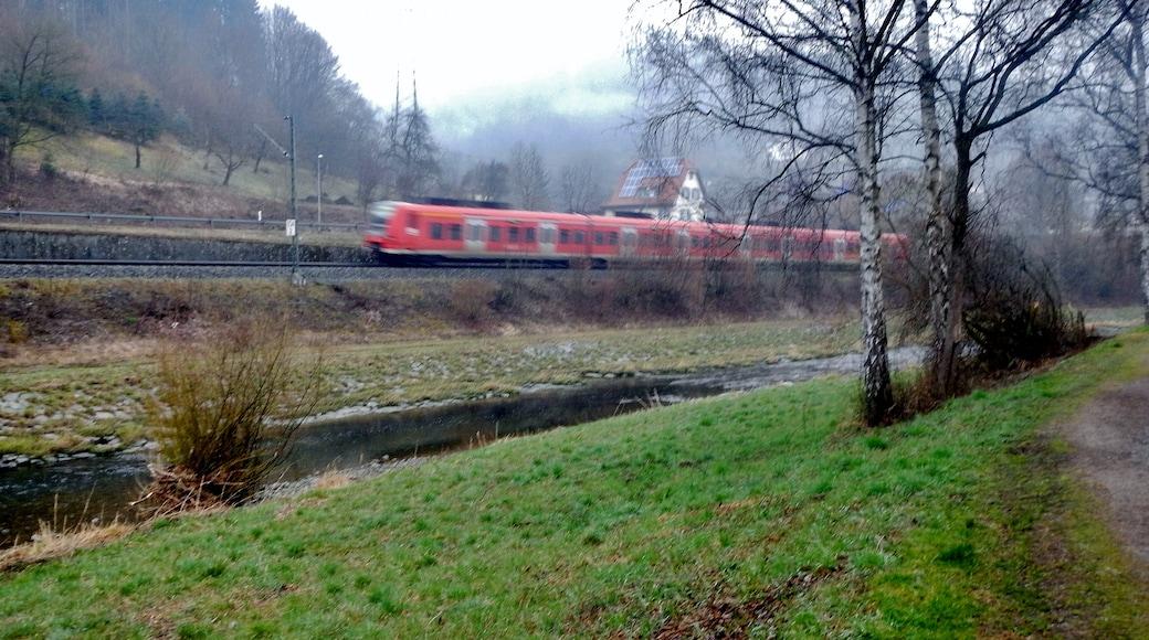"""Foto """"Oberndorf am Neckar"""" von qwesy qwesy (CC BY)/zugeschnittenes Original"""