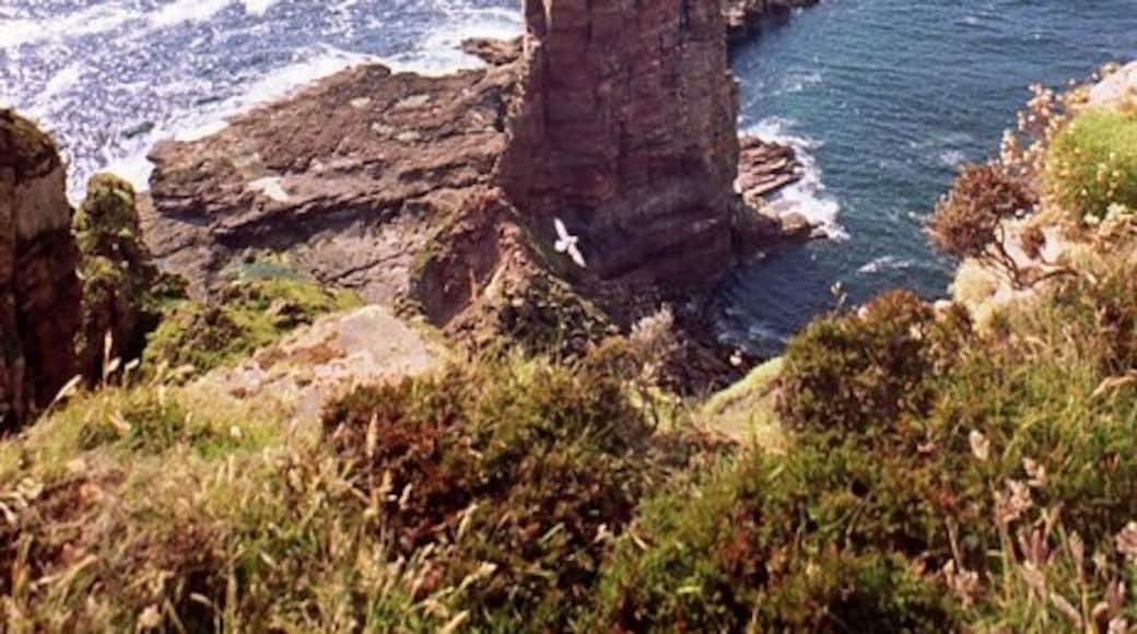 """Photo """"Old Man of Hoy"""" by Des Colhoun (CC BY-SA) / Cropped from original"""