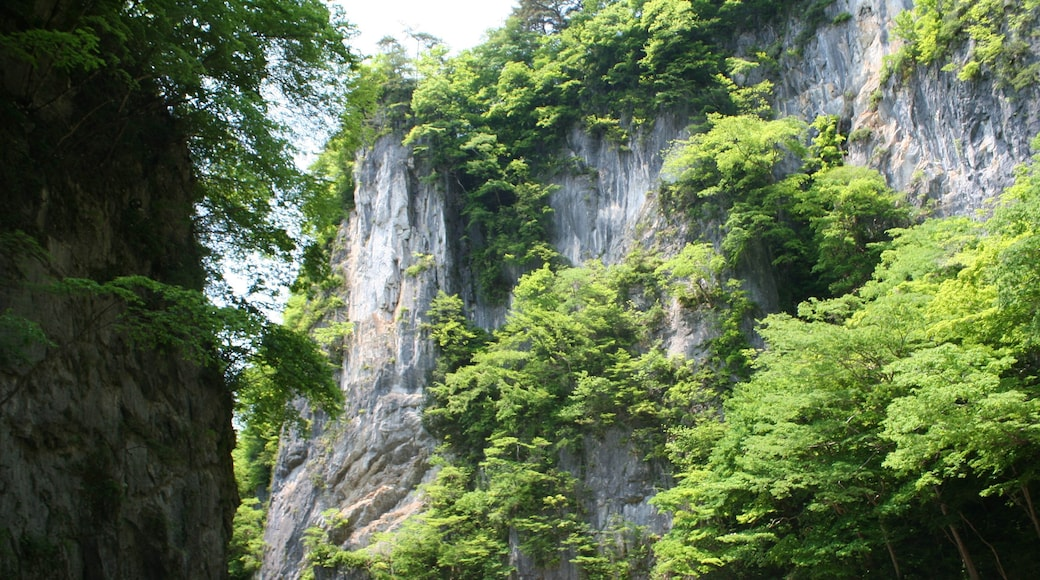 """Photo """"Ichinoseki"""" by Satoh Junpei (CC BY-SA) / Cropped from original"""