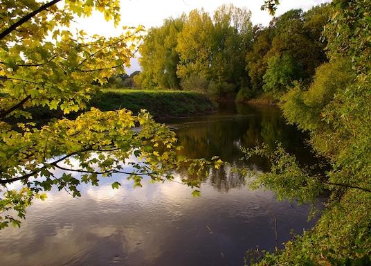 加布森, 德國