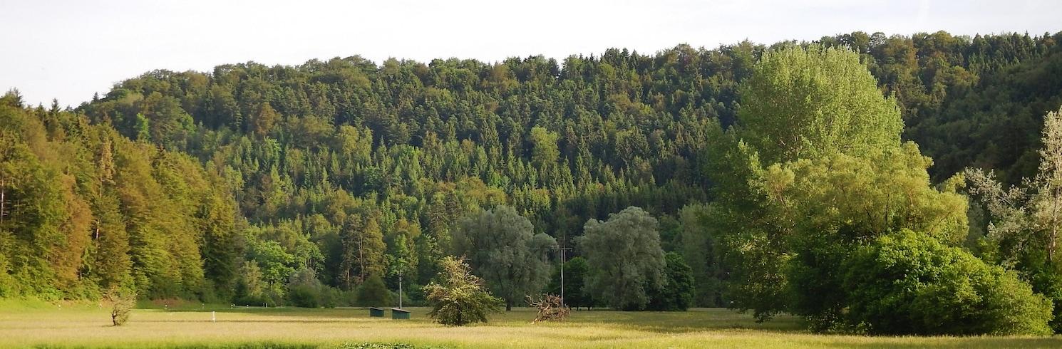 باد إمناو, ألمانيا