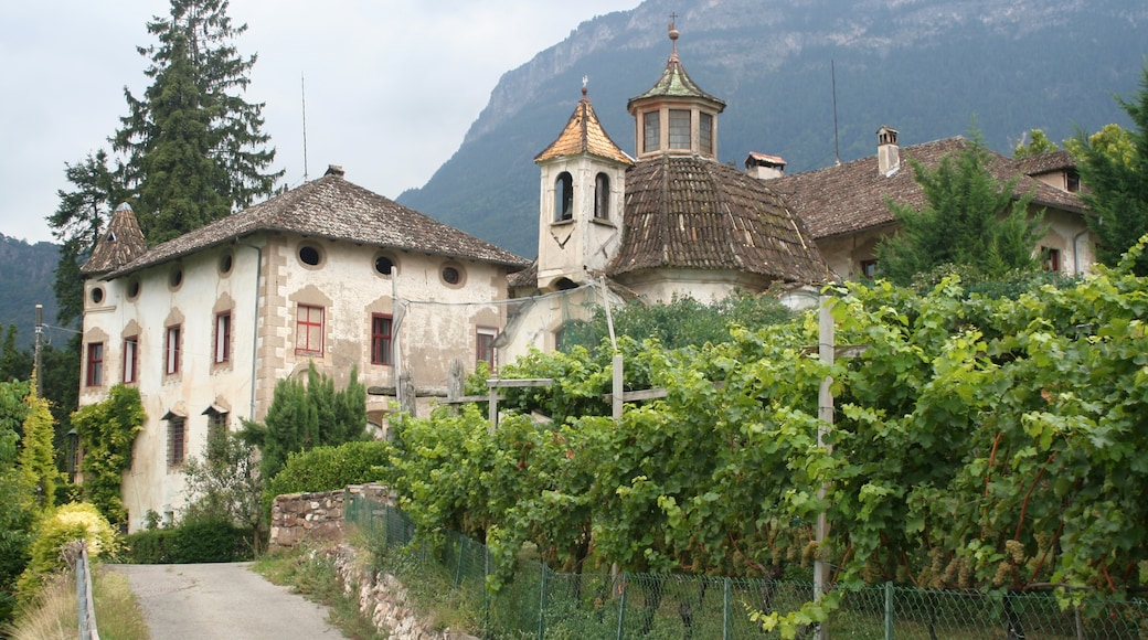 """Photo """"St. Michael/San Michele"""" by ManfredK (CC BY-SA) / Cropped from original"""