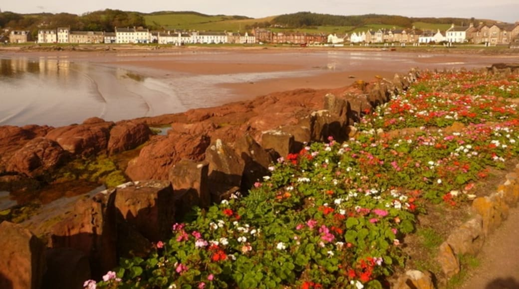 """Photo """"Millport"""" by Chris Downer (CC BY-SA) / Cropped from original"""