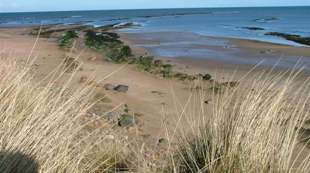 """Photo """"Druridge Bay Country Park"""" by Mick Garratt (CC BY-SA) / Cropped from original"""