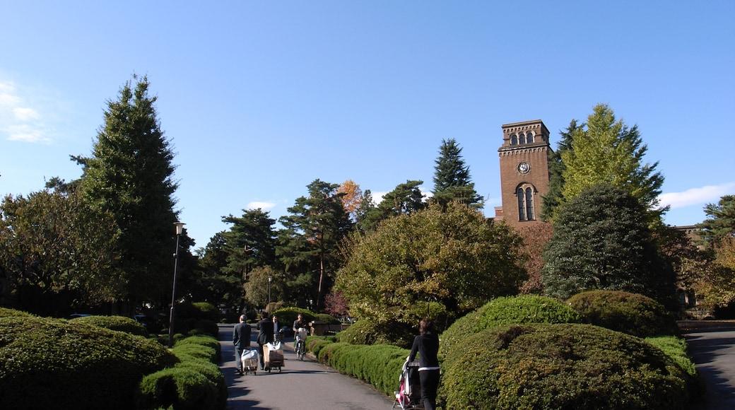 """照片""""国立市"""" 拍摄者:y-yoshiike(CC BY)原片经过裁剪"""
