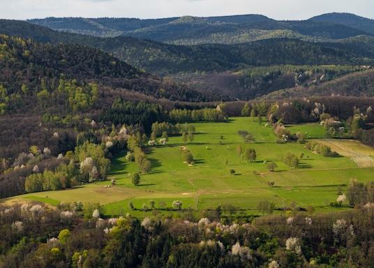 Wilgartswiesen, Duitsland