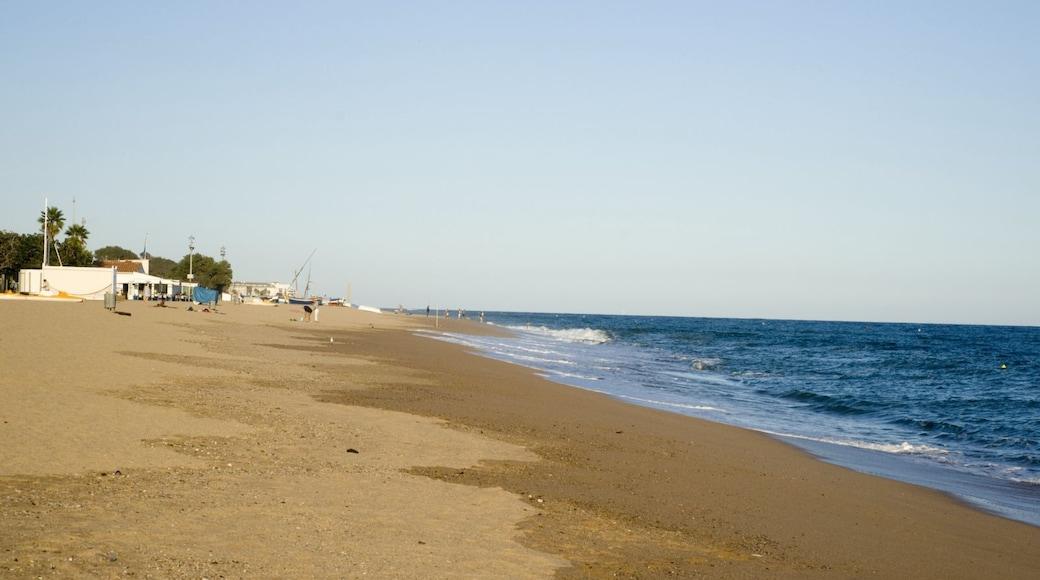 Foto 'Playa de Pineda de Mar' van Txllxt TxllxT (CC BY-SA) / bijgesneden versie van origineel