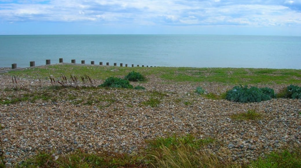"""Photo """"Ferring"""" by Simon Carey (CC BY-SA) / Cropped from original"""