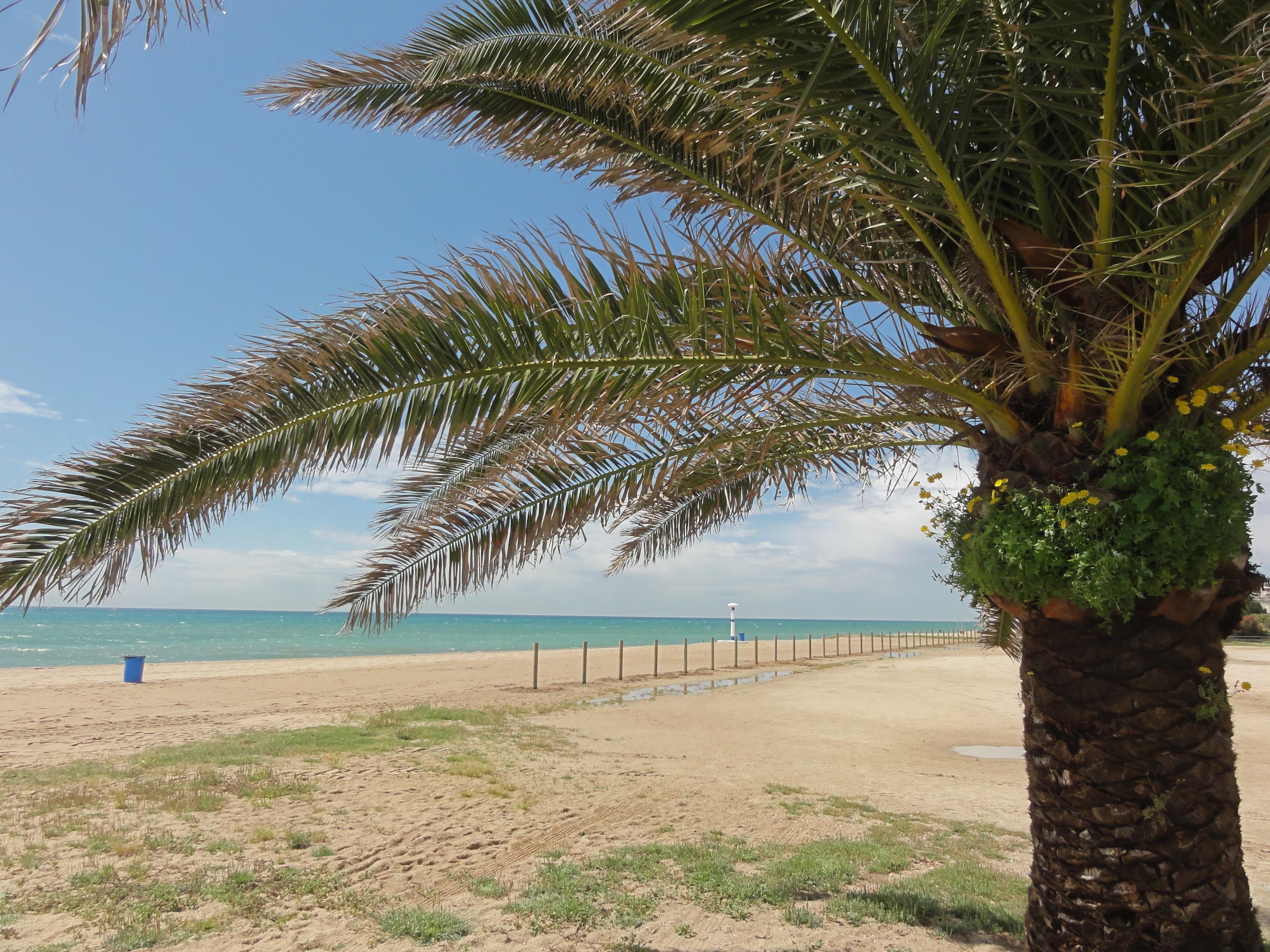 Pineda de Mar Beach, Pineda de Mar, Catalonia, Spain