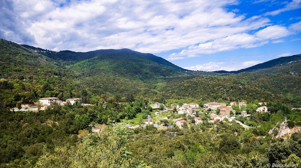 """Photo """"Serra-di-Fiumorbo"""" by Bonachera jf (page does not exist) (CC BY-SA) / Cropped from original"""