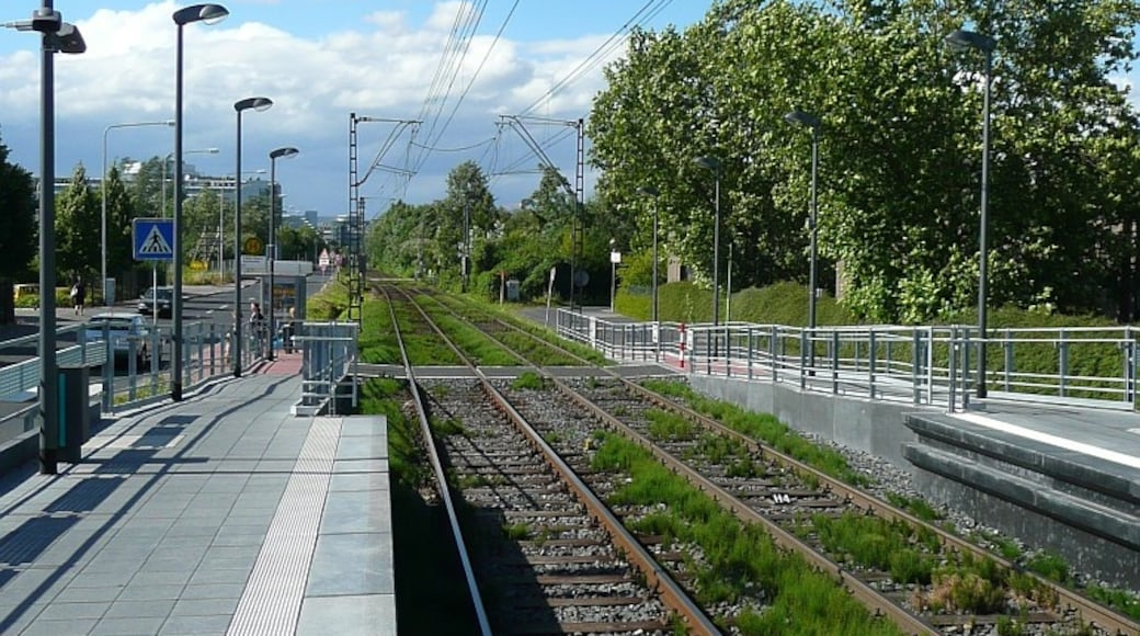 """Photo """"Frankfurt am Main Nord-West"""" by grendelkeep (CC BY-SA) / Cropped from original"""