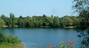 Калькум