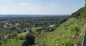 Schoenfeld-Weissig