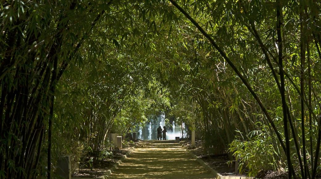 """Foto """"Garcia Sanabria Park"""" von Koppchen (CC BY)/zugeschnittenes Original"""