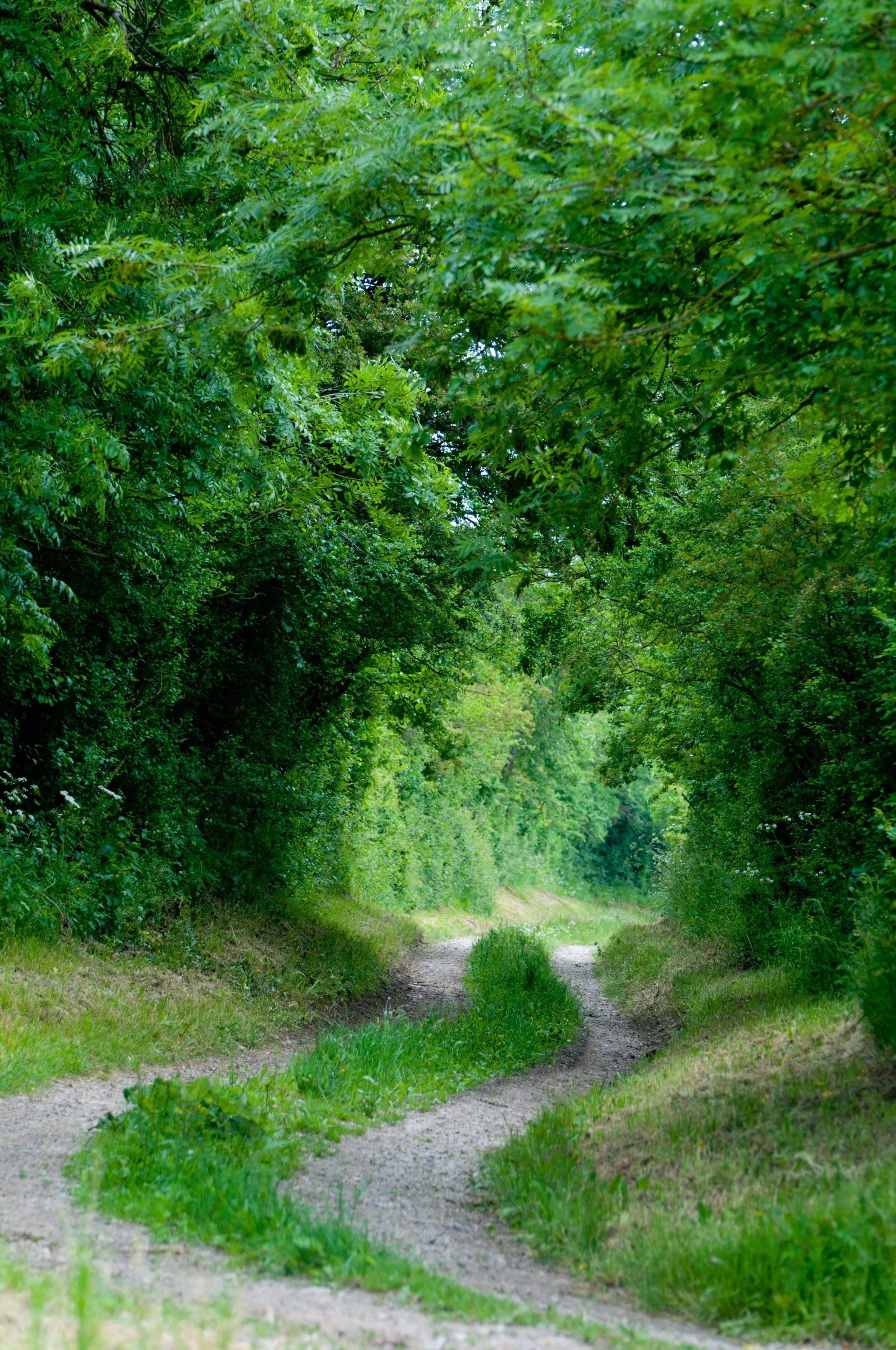 Carentan les Marais, Manche, France