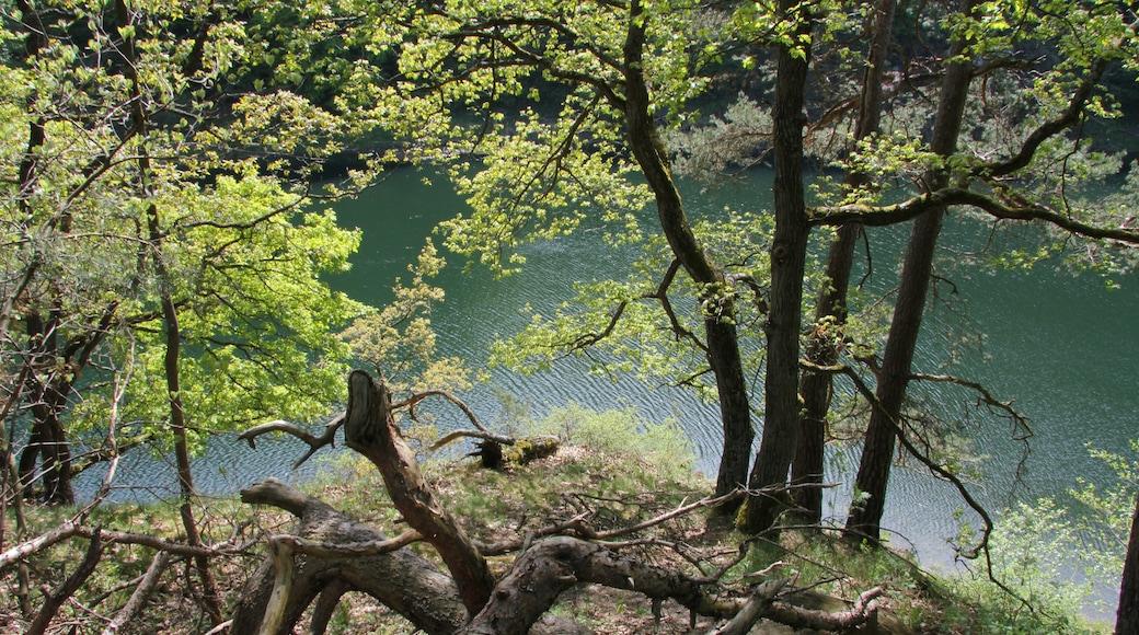 """Foto """"Eifelpark"""" von Helfmann (CC BY-SA)/zugeschnittenes Original"""