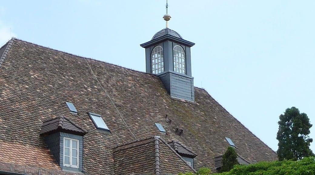 """Foto """"Deidesheim"""" von Immanuel Giel (CC BY)/zugeschnittenes Original"""