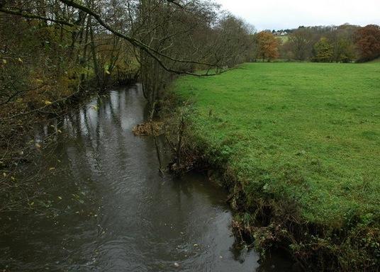 Coldridge, Storbritannien