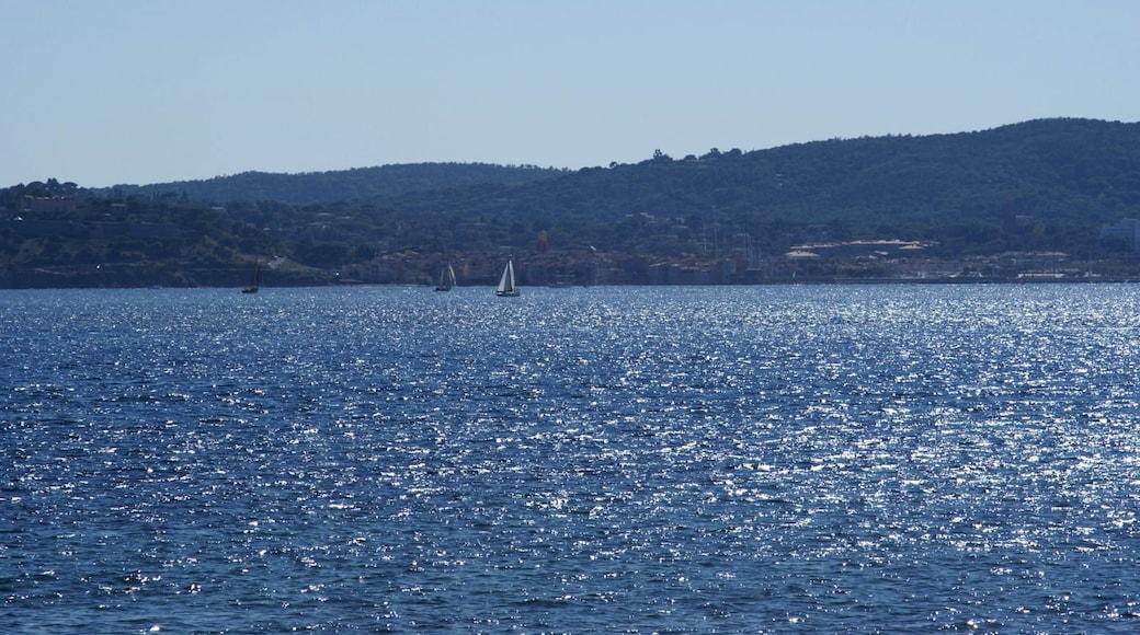 «Sainte-Maxime», photo de Txllxt TxllxT (CC BY-SA) / rognée de l'originale