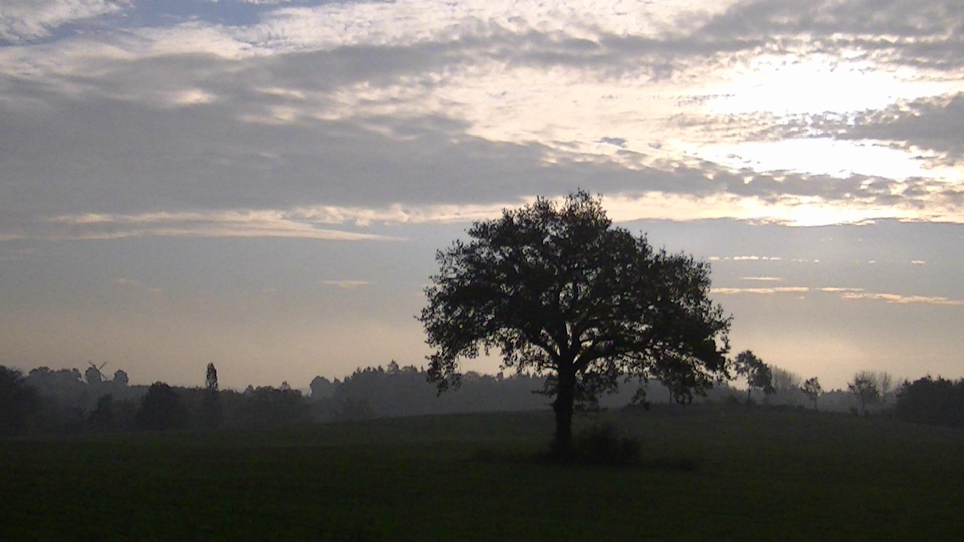 Grebin, Schleswig-Holstein