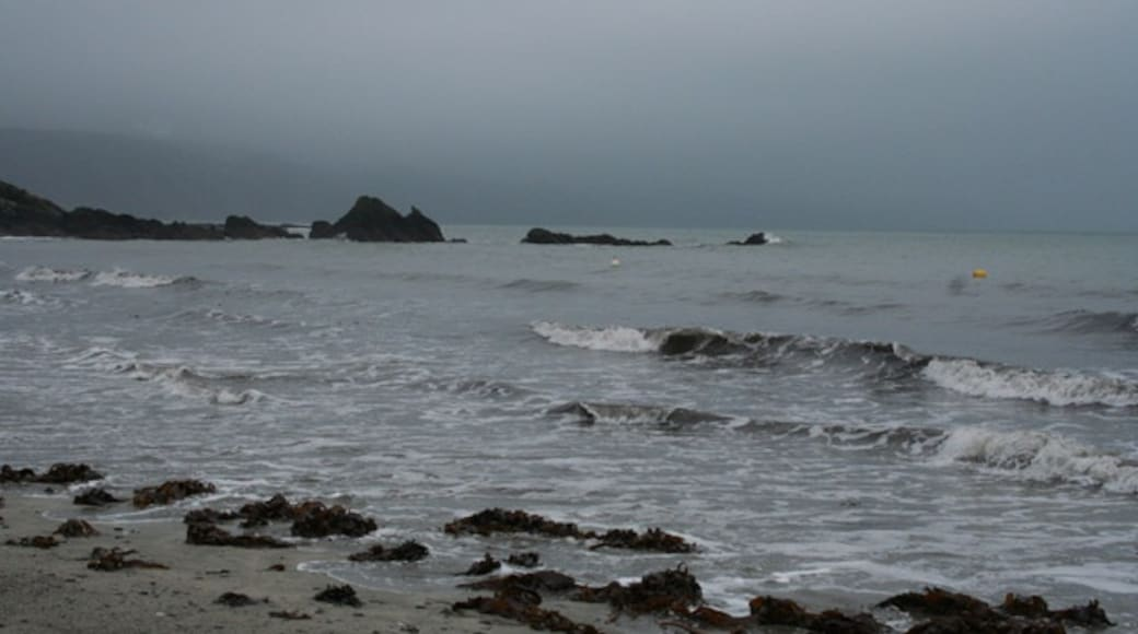 """Photo """"Looe Beach"""" by Martin Bodman (CC BY-SA) / Cropped from original"""
