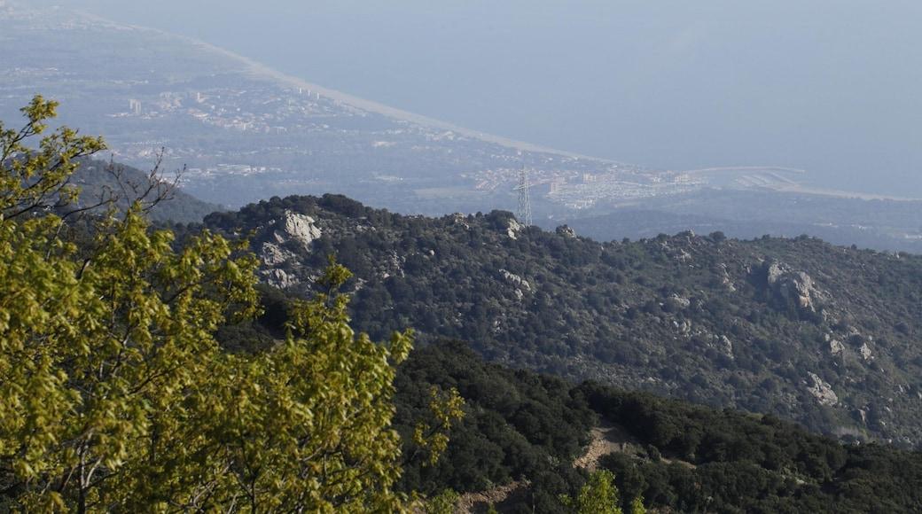 «Argelès-sur-Mer», photo de Pmau (CC BY-SA) / rognée de l'originale