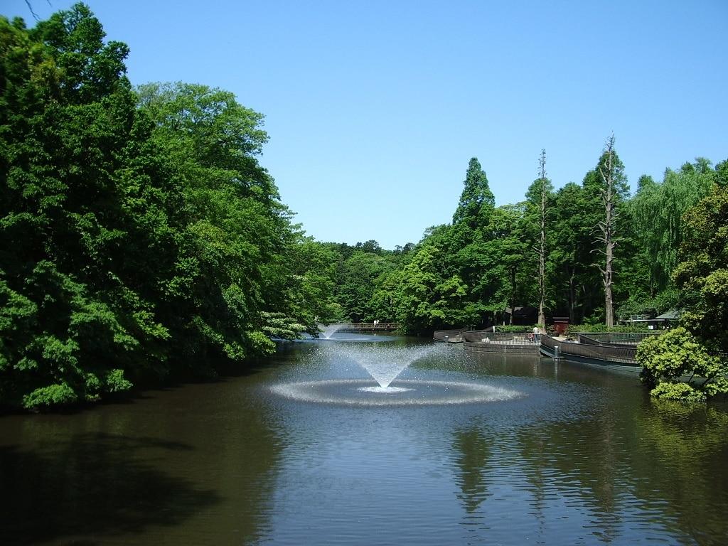 Mitaka, Tokyo Prefecture, Japan