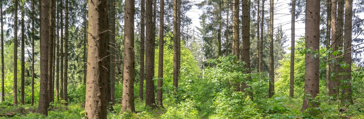 Bad Lippspringe, Germany