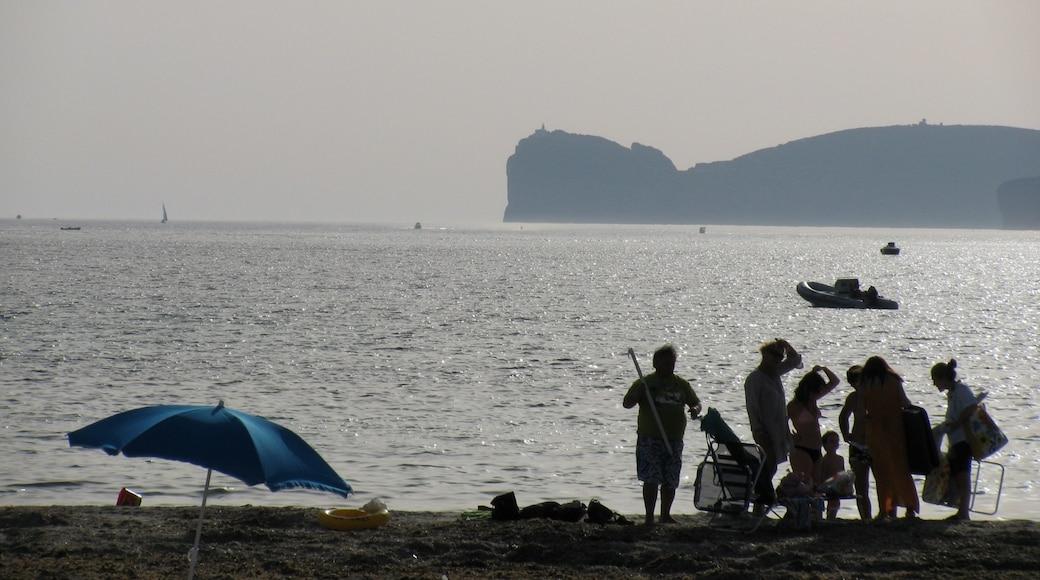"""ภาพ """"หาด San Giovanni"""" โดย naz84 (CC BY) / ตัดภาพจากขนาดต้นฉบับ"""