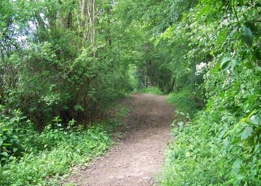 Fernhurst, Großbritannien