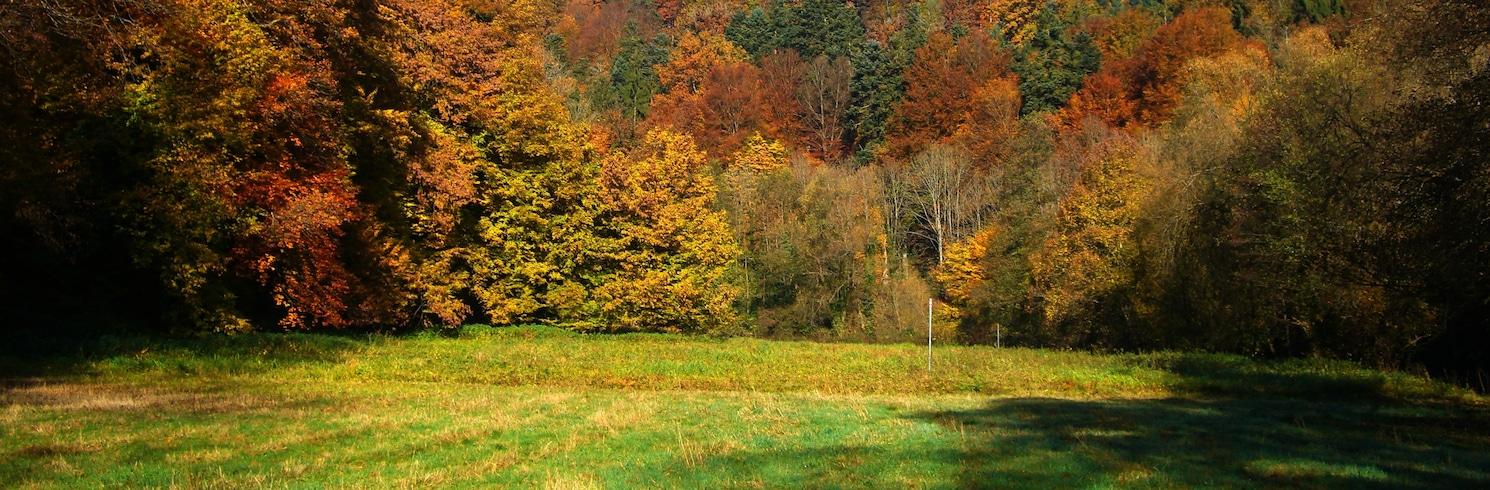 Würm, Germany