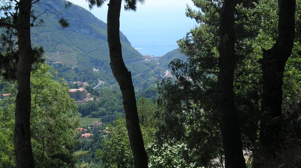 """Foto """"Cava de' Tirreni"""" di Giuseppe Pepe (CC BY) / Ritaglio dell'originale"""