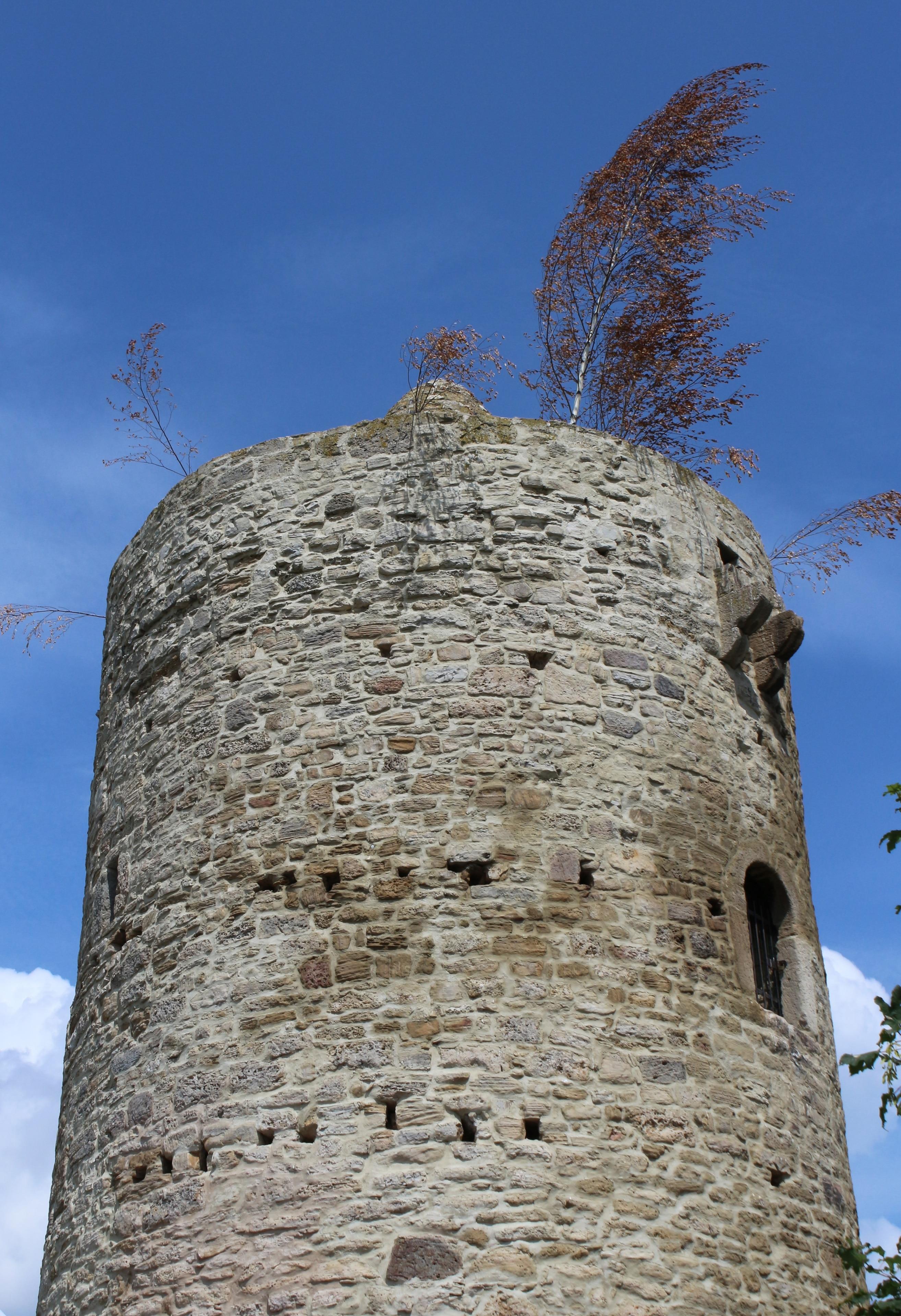 Mücheln (Geiseltal), Sachsen-Anhalt, Deutschland