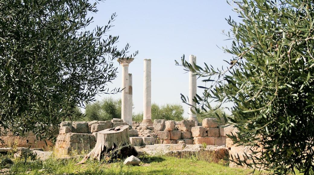 """Foto """"Canosa di Puglia"""" von Paola Liliana Buttiglione (CC BY-SA)/zugeschnittenes Original"""