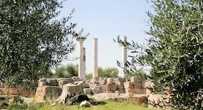 카노사디풀리아