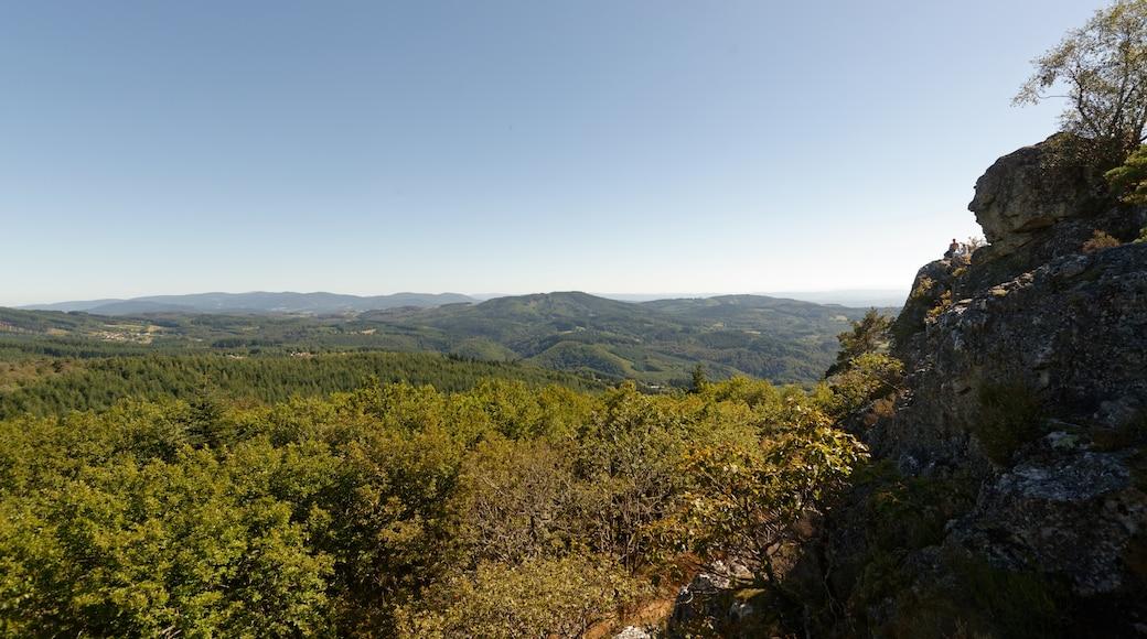 «Parc naturel régional Livradois-Forez», photo de Jastrow (CC BY) / rognée de l'originale