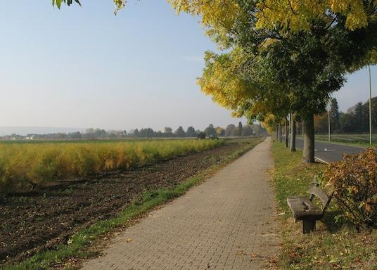 Diurenas, Vokietija