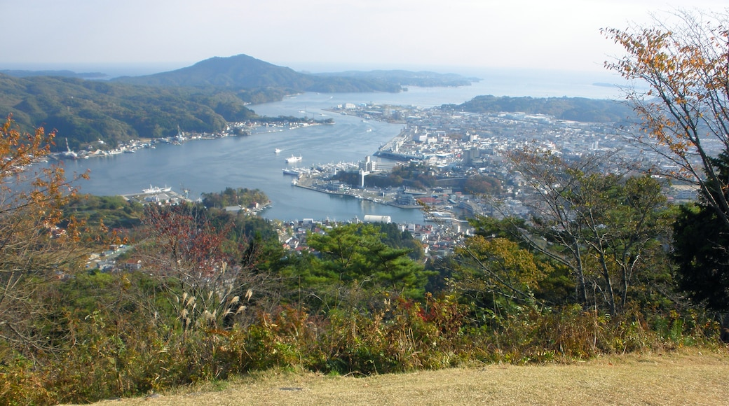 "Photo ""Kesennuma"" by Satoh Junpei (CC BY-SA) / Cropped from original"