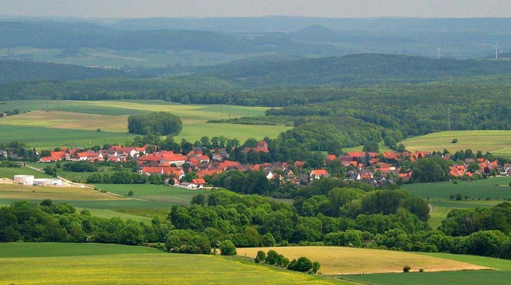 """Foto """"Münden Nature Park"""" von Dschwen (CC BY-SA)/zugeschnittenes Original"""