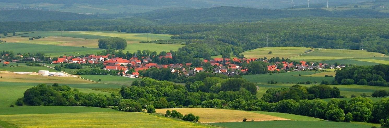 Дрансфельд, Германия