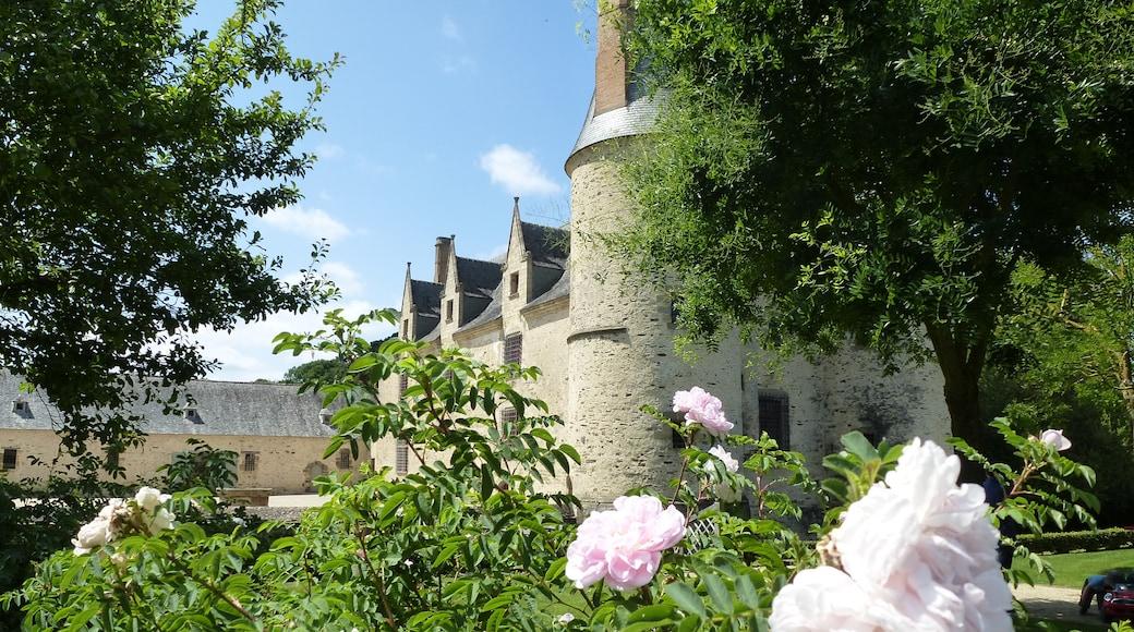 «Noyal-sur-Vilaine», photo de chisloup (CC BY) / rognée de l'originale