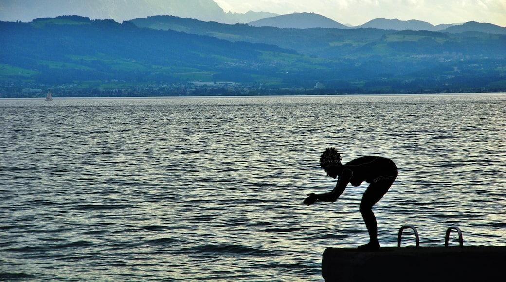 """Foto """"Langenargen"""" von qwesy qwesy (CC BY)/zugeschnittenes Original"""